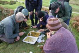 Examining the creatures found during the pond dipping demonstration © Alan Rowland
